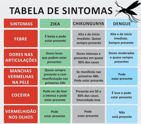 Full dengue 5